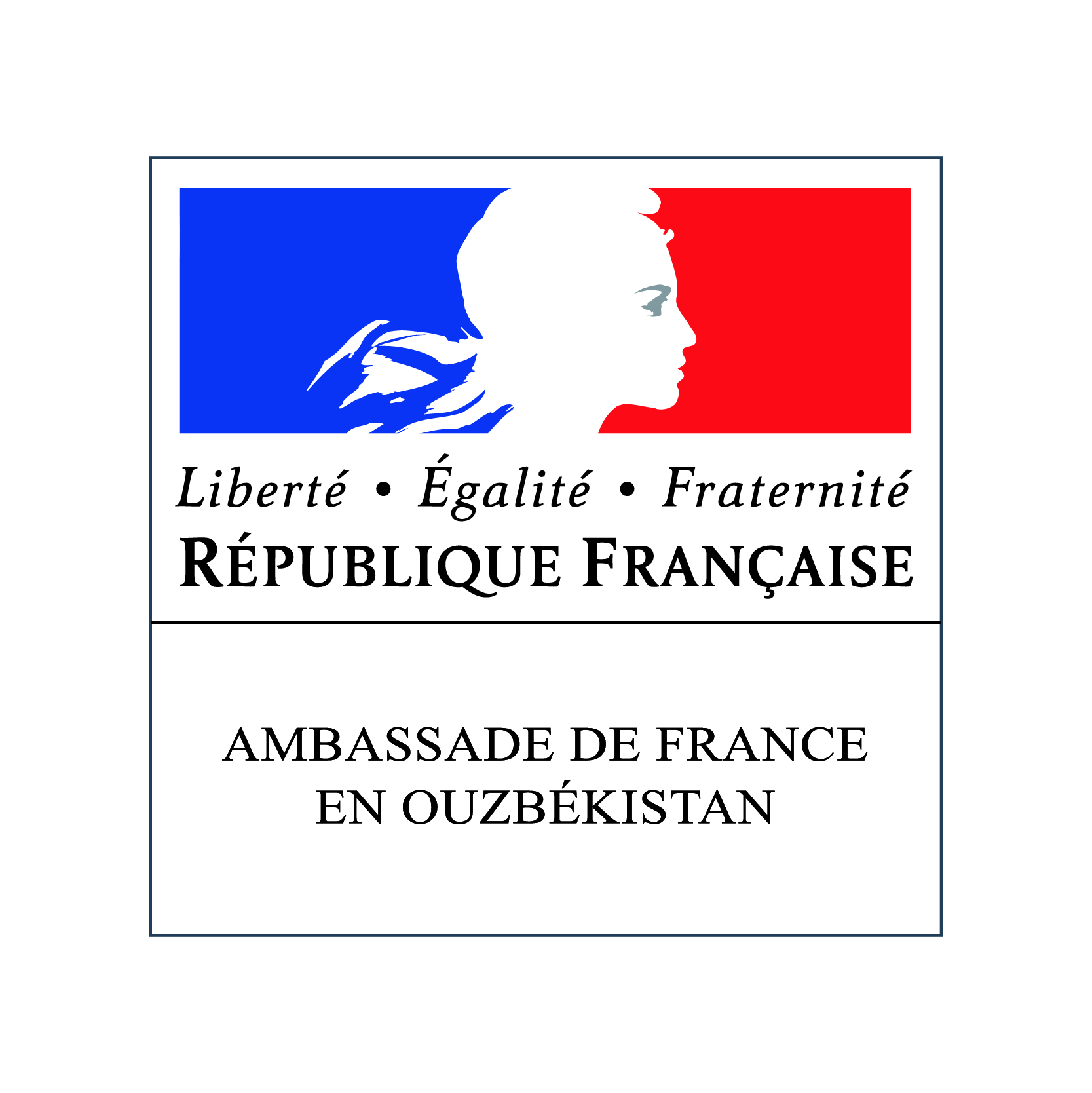 France-Visas  The official visa website for France
